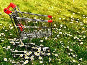 """Deloitte: Polacy wybierają """"zielone"""" produkty [RAPORT]"""